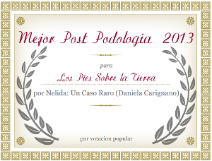 Mejor web de podología 2013